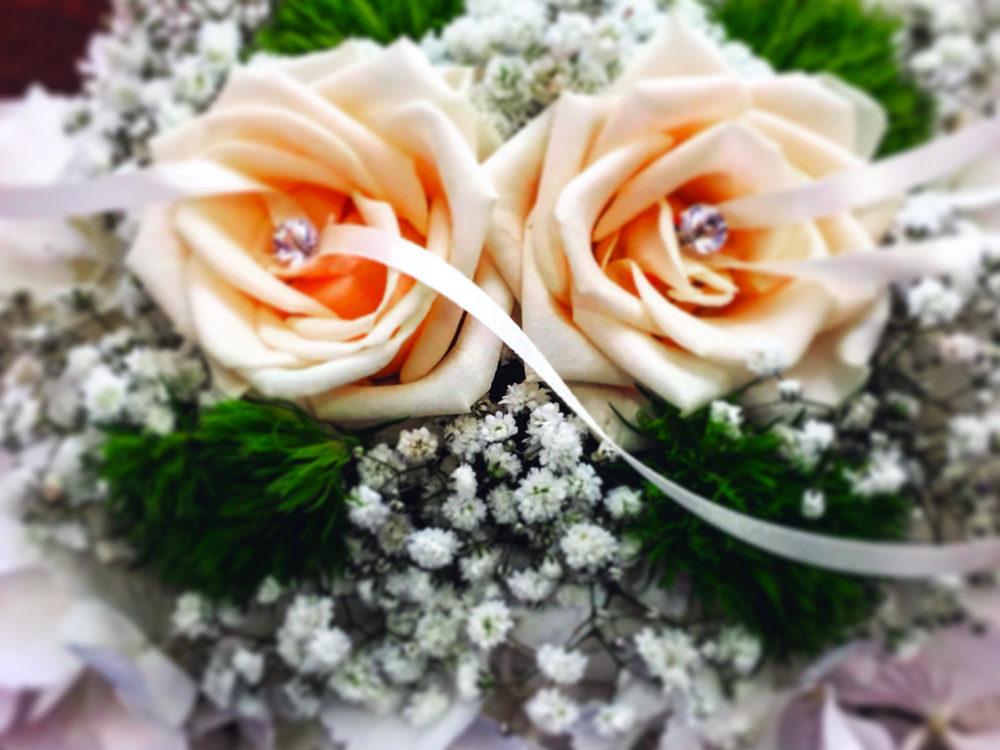 Matrimonio – G&S